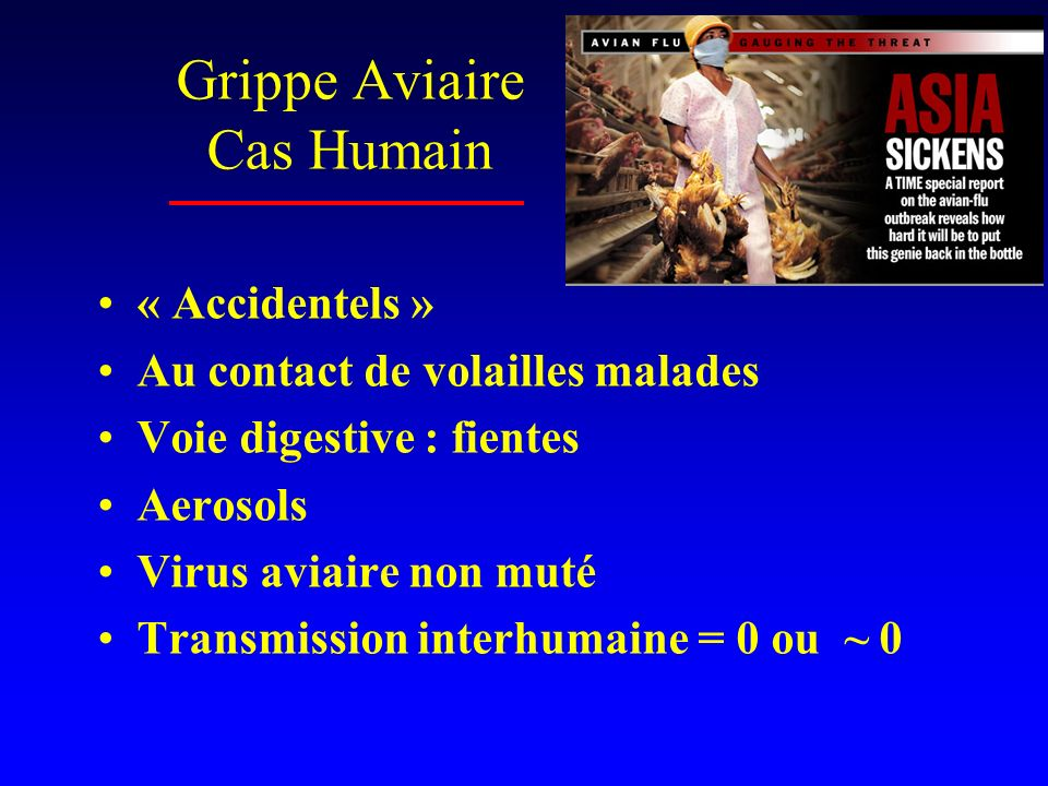Grippe Aviaire Cas Humain