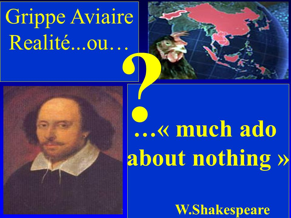 …« much ado about nothing » Grippe Aviaire Realité...ou…