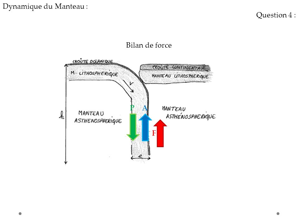 Dynamique du Manteau : Question 4 : Bilan de force P A F