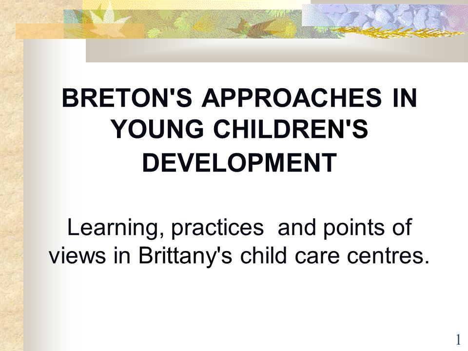 BRETON S APPROACHES IN YOUNG CHILDREN S DEVELOPMENT Learning, practices and points of views in Brittany s child care centres.