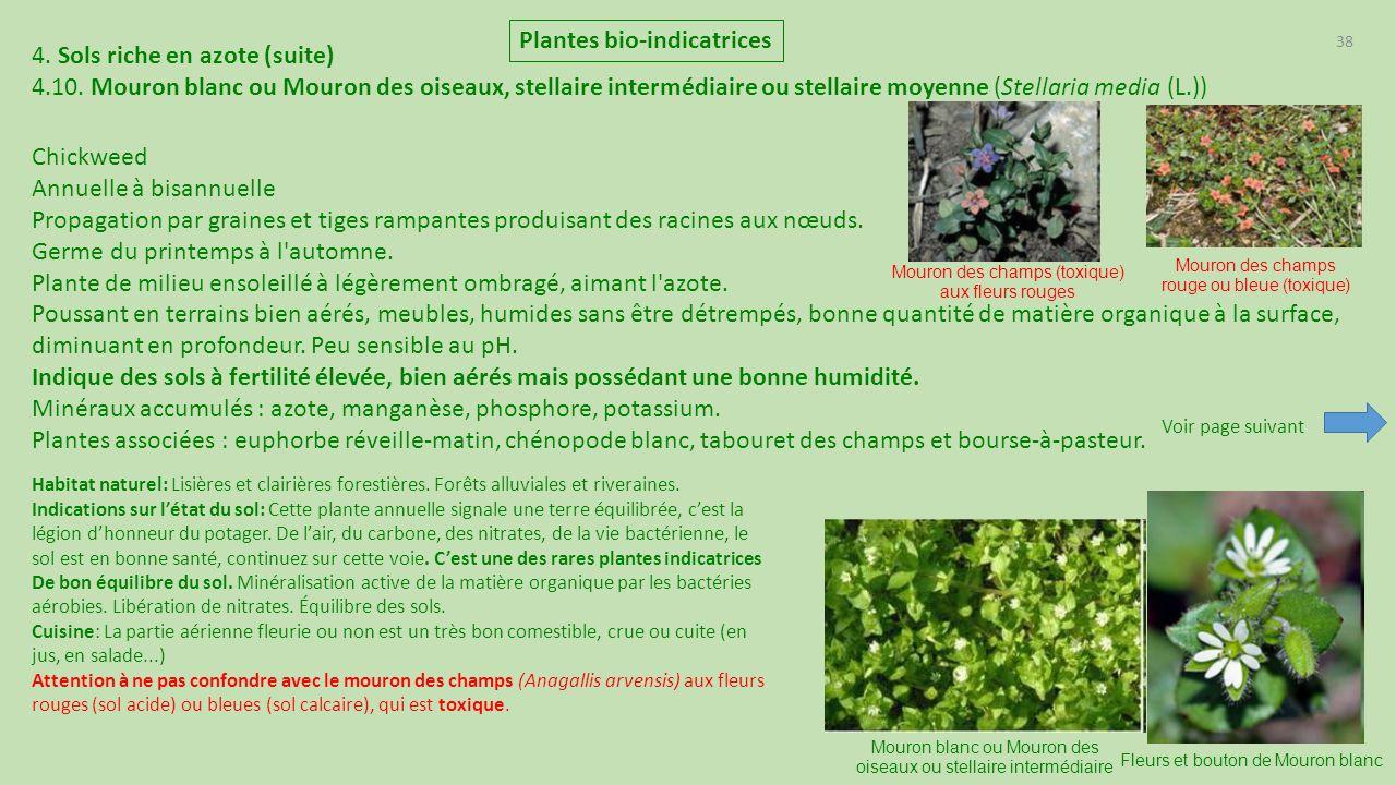 plantes bio indicatrices de france ppt t l charger. Black Bedroom Furniture Sets. Home Design Ideas