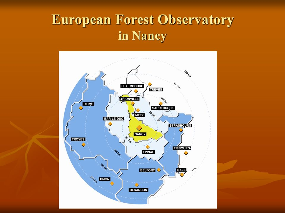 European Forest Observatory in Nancy