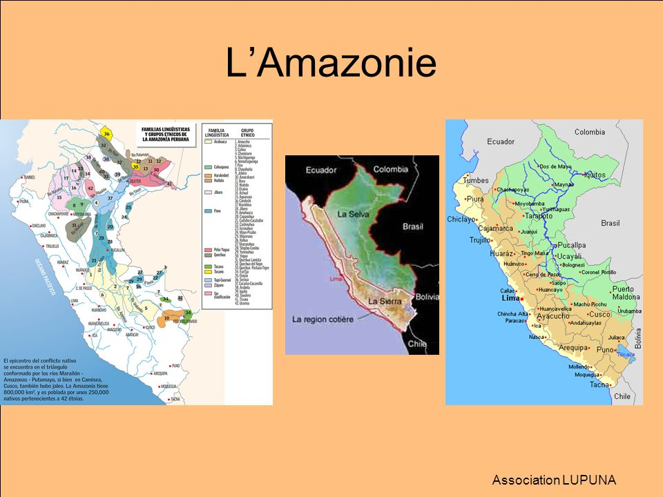 L'Amazonie Association LUPUNA