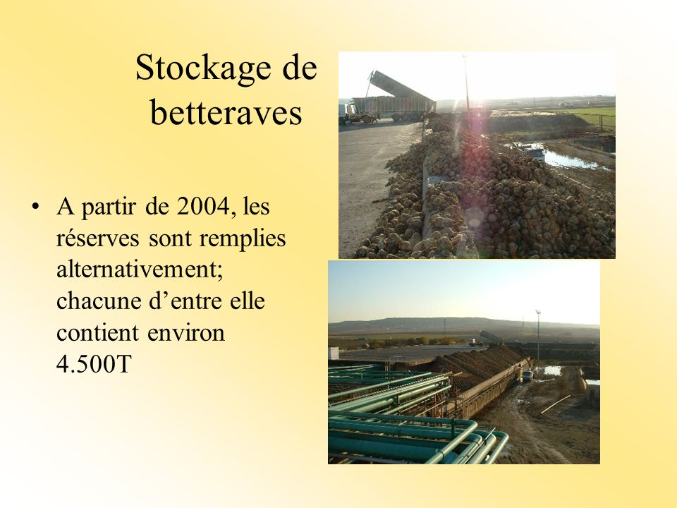 Stockage de betteraves