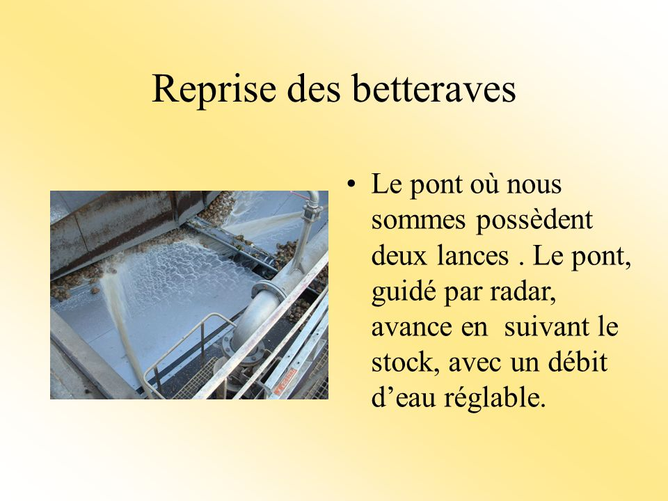 Reprise des betteraves