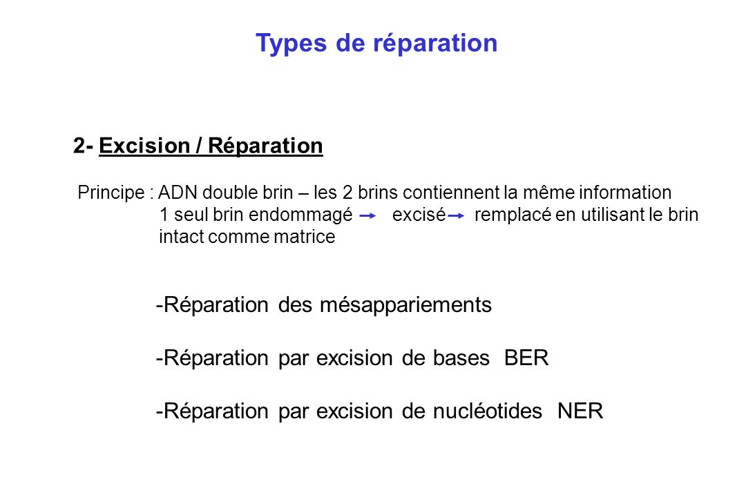 Types de réparation 2- Excision / Réparation