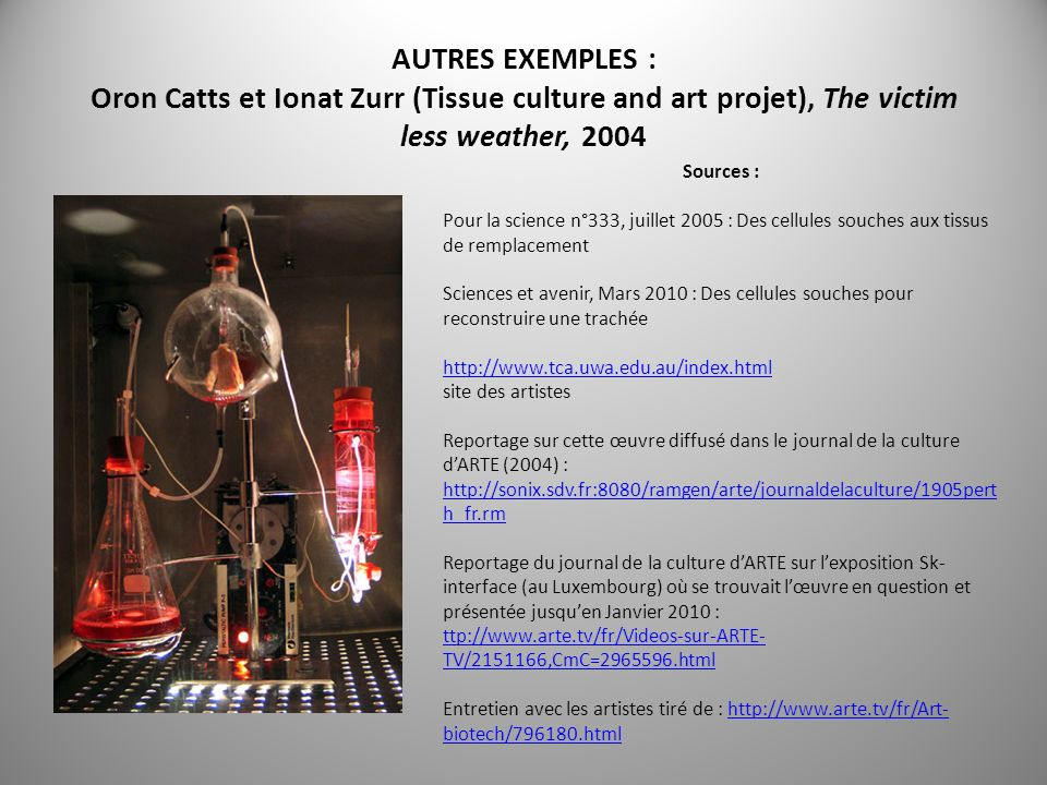 AUTRES EXEMPLES : Oron Catts et Ionat Zurr (Tissue culture and art projet), The victim less weather, 2004