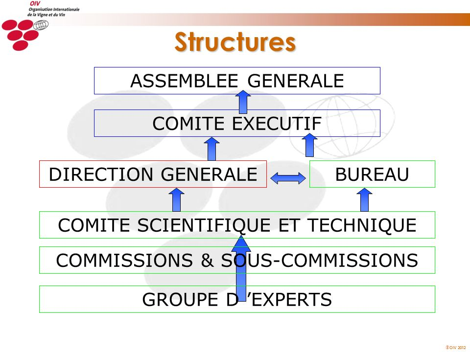 Structures ASSEMBLEE GENERALE COMITE EXECUTIF DIRECTION GENERALE
