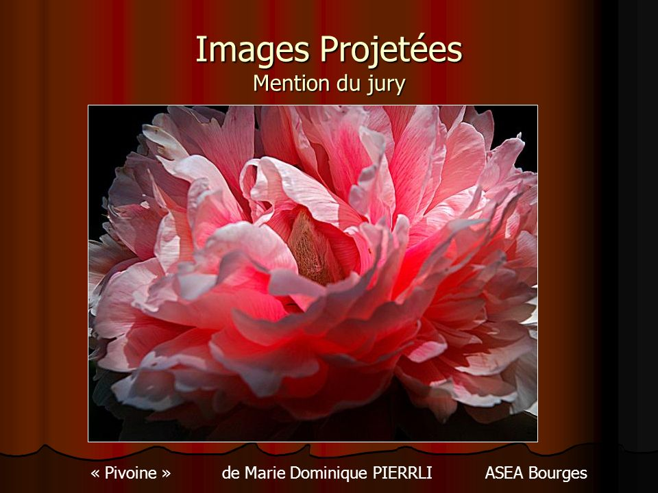 Images Projetées Mention du jury