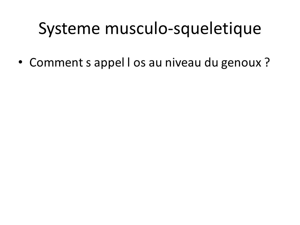 Systeme musculo-squeletique