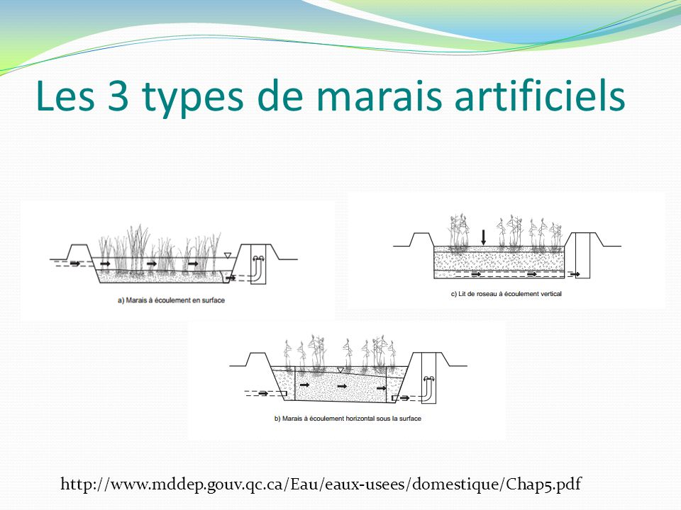 Les 3 types de marais artificiels