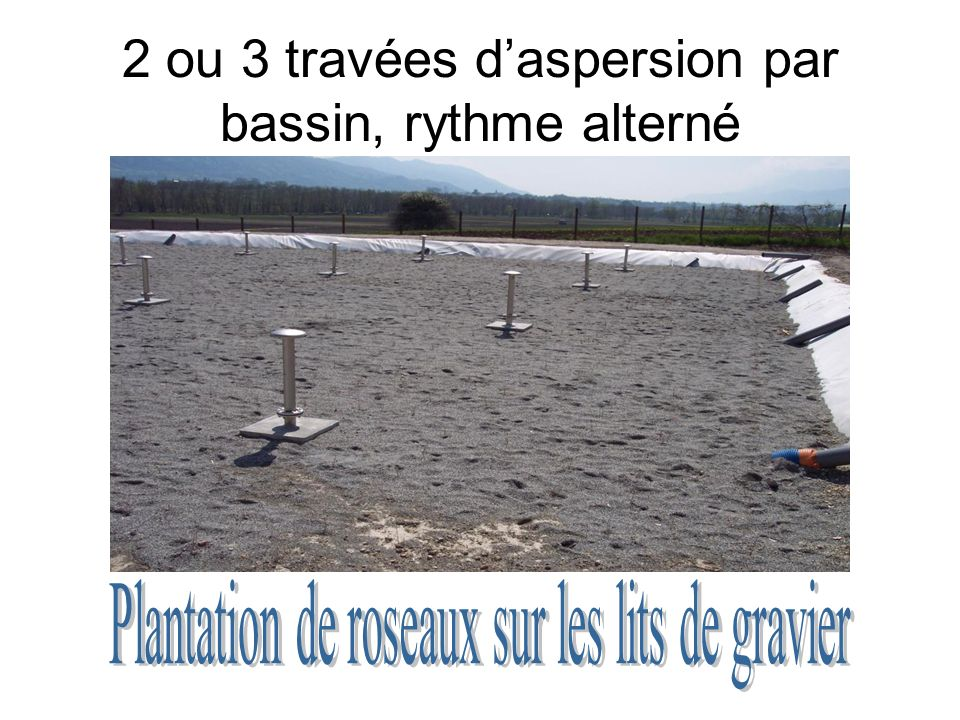 2 ou 3 travées d'aspersion par bassin, rythme alterné