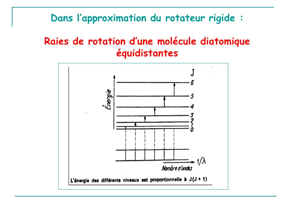 Dans l'approximation du rotateur rigide :