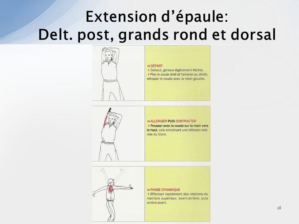 Delt. post, grands rond et dorsal