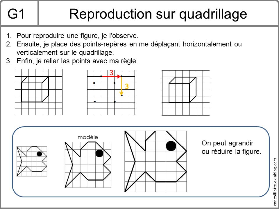 Reproduction sur quadrillage