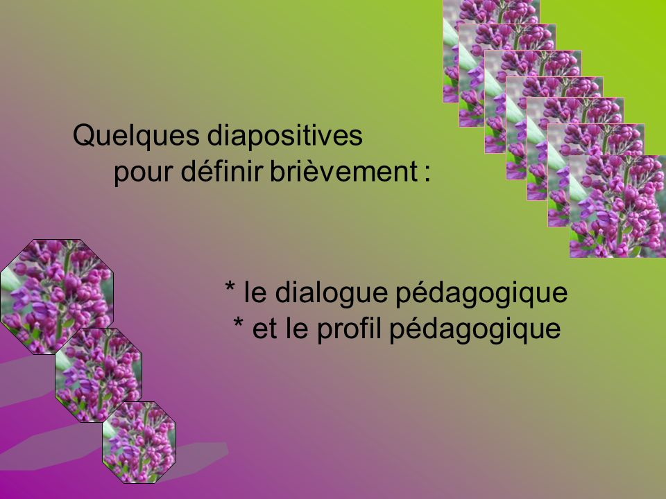 Quelques diapositives