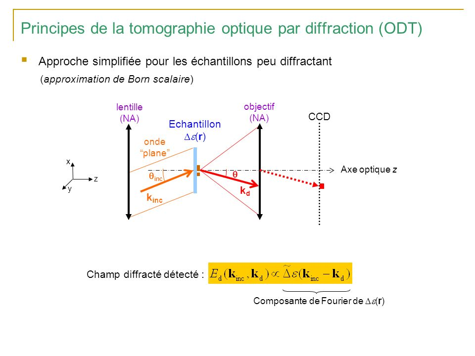 Principes de la tomographie optique par diffraction (ODT)