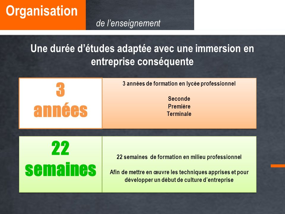 3 années 22 semaines Organisation