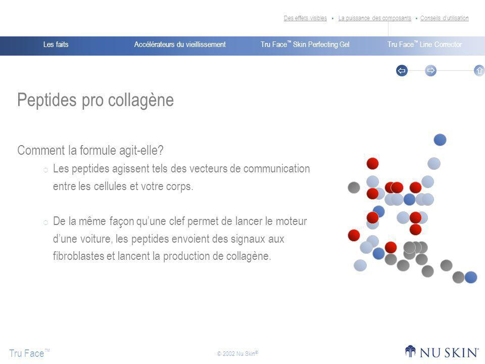 Peptides pro collagène