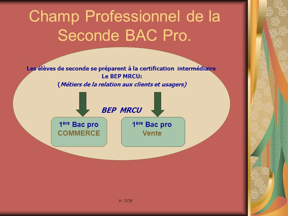 Champ Professionnel de la Seconde BAC Pro.