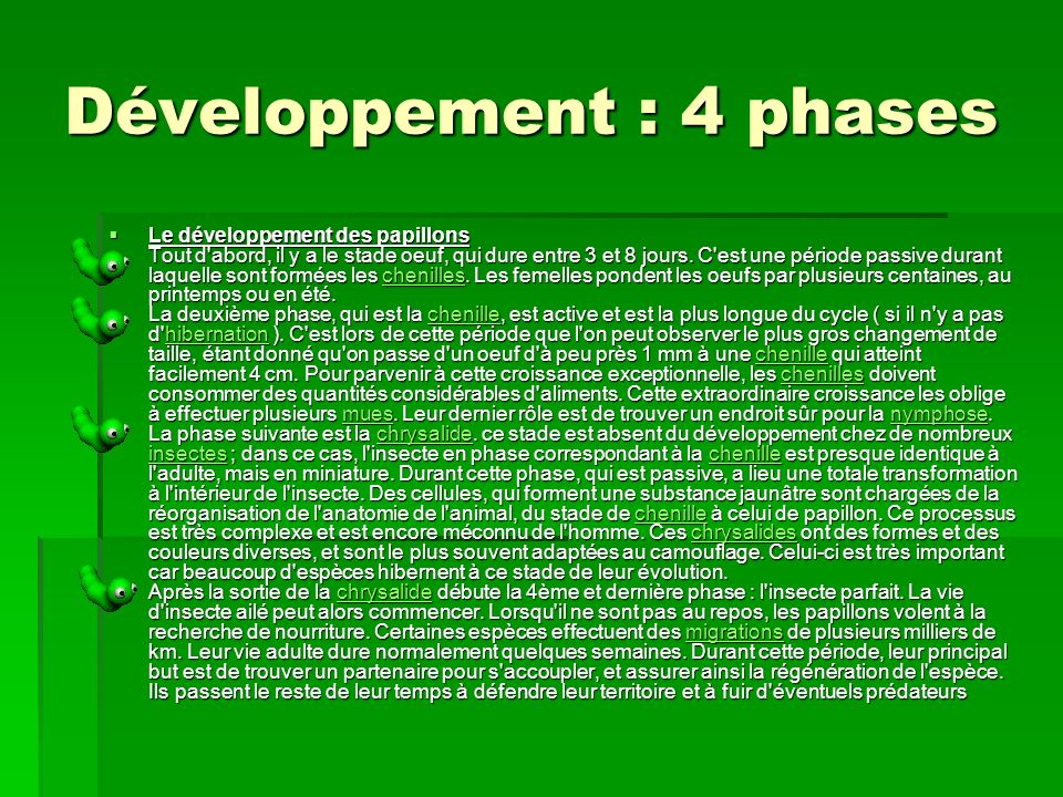 Développement : 4 phases
