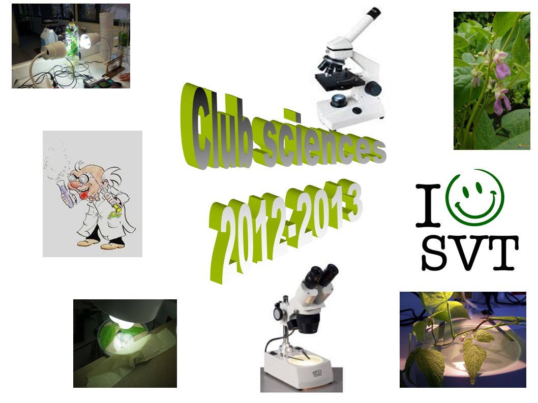 Club sciences 2012-2013