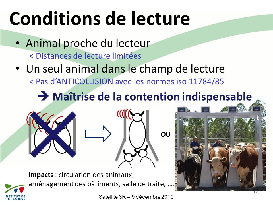 Conditions de lecture Animal proche du lecteur