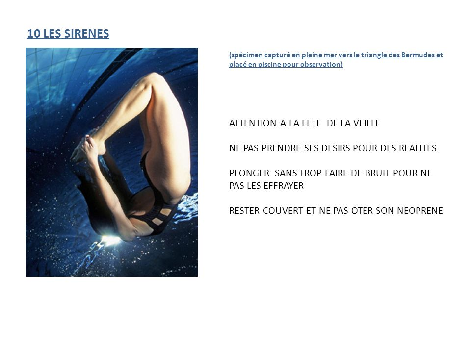 10 LES SIRENES ATTENTION A LA FETE DE LA VEILLE