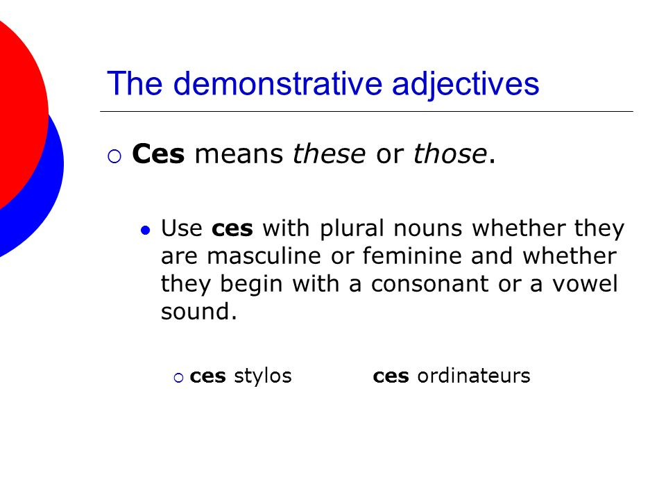 The demonstrative adjectives