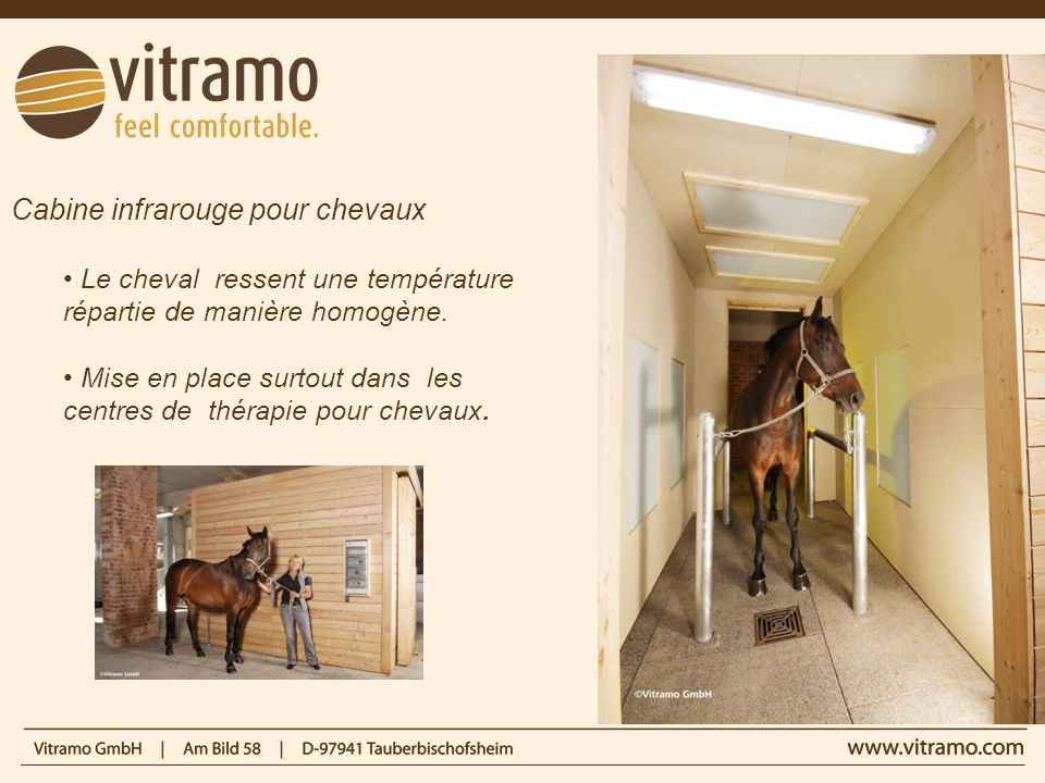 Cabine infrarouge pour chevaux