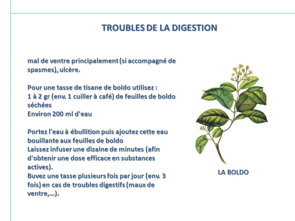 TROUBLES DE LA DIGESTION
