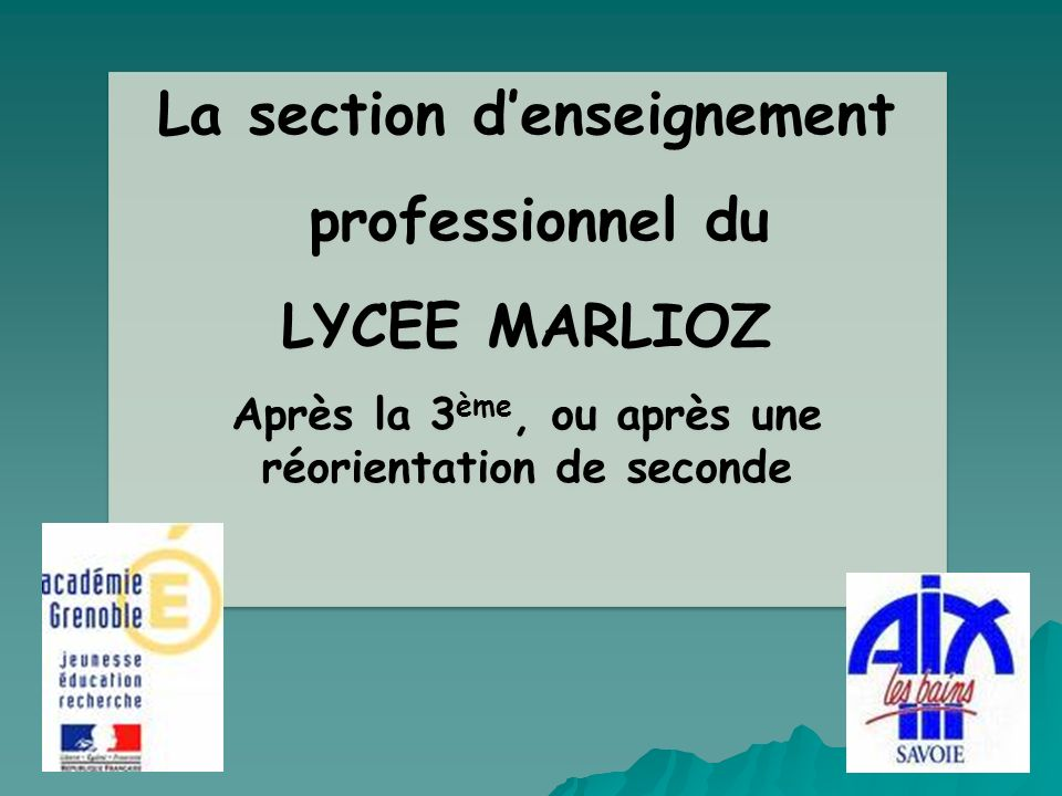 La section d'enseignement professionnel du LYCEE MARLIOZ