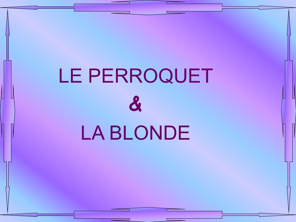 LE PERROQUET & LA BLONDE