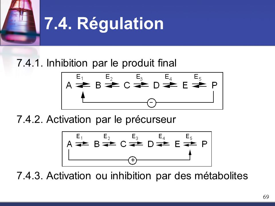 7.4. Régulation Inhibition par le produit final
