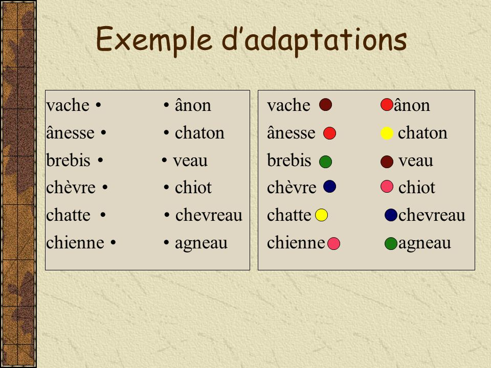 Exemple d'adaptations