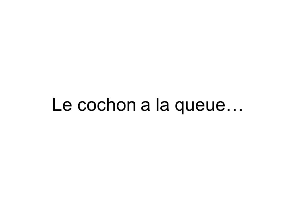Le cochon a la queue…