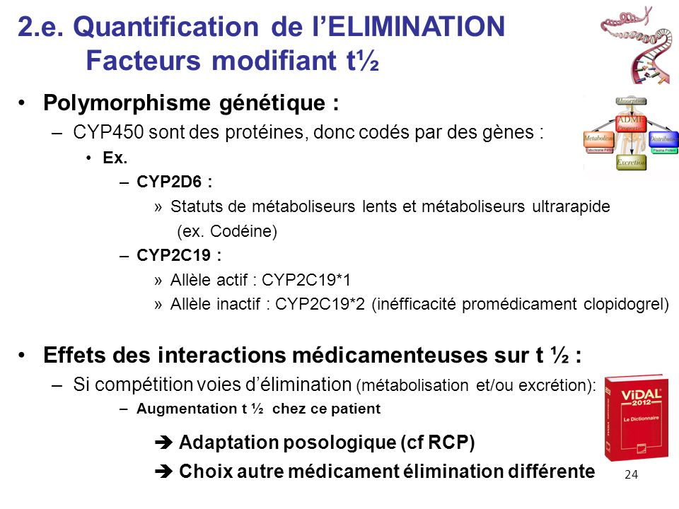 2.e. Quantification de l'ELIMINATION Facteurs modifiant t½