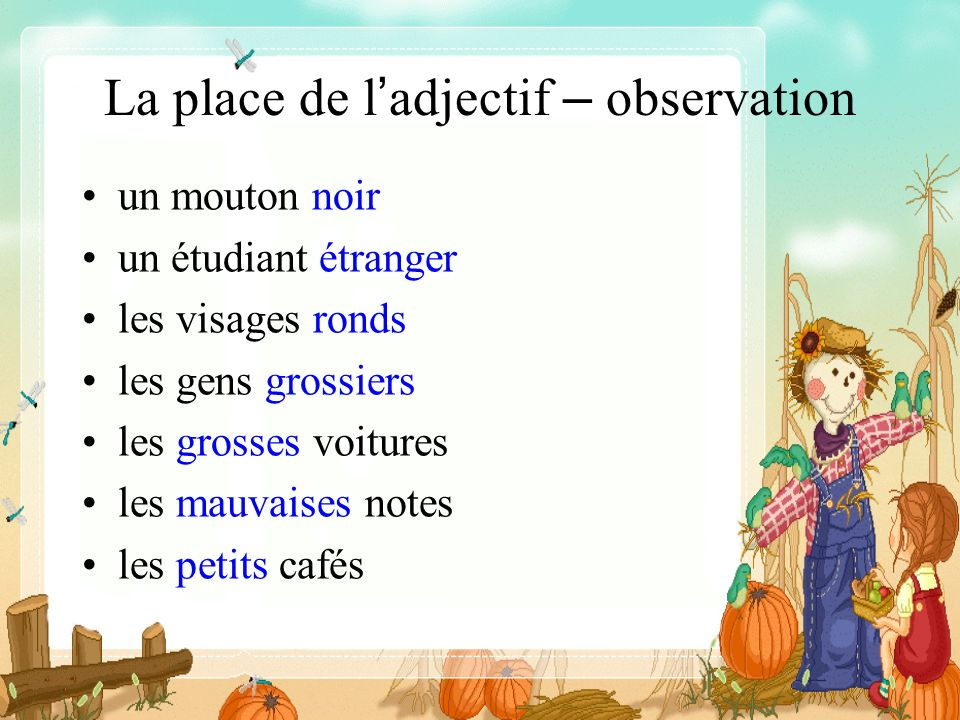 La place de l'adjectif – observation