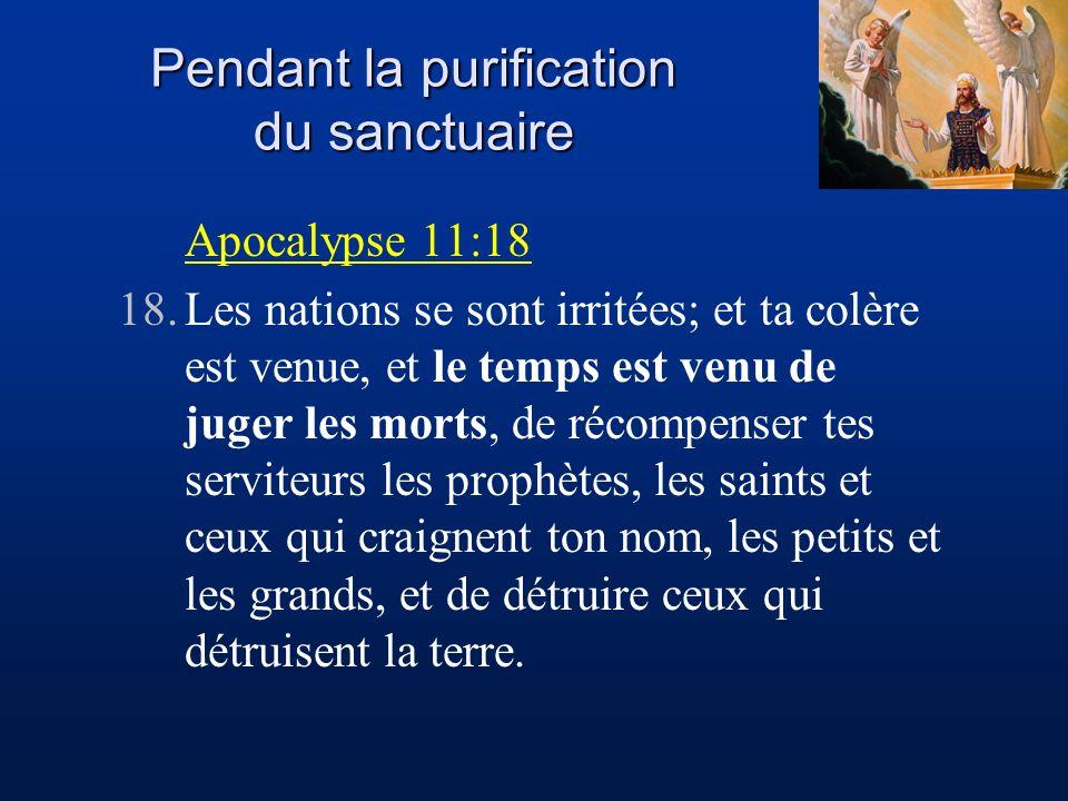 Jésus-Christ révélé par le Sanctuaire - ppt télécharger