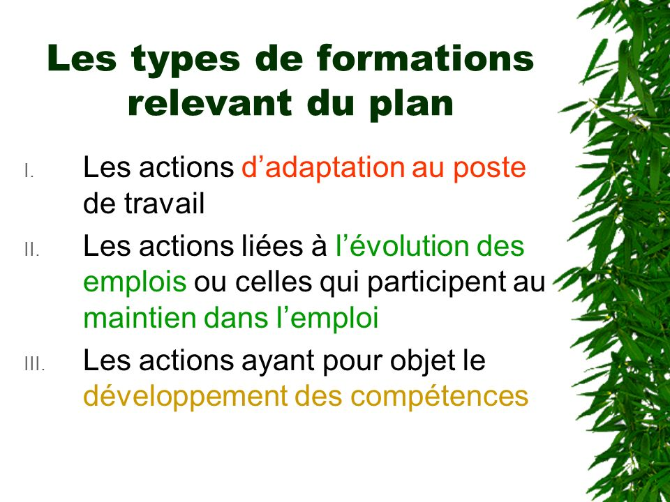 Les types de formations relevant du plan