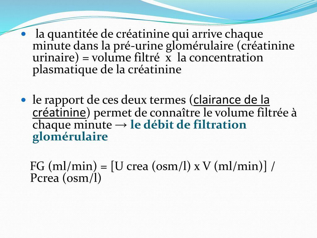 debut filtration glomerulaire