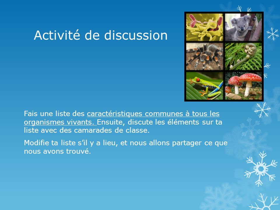 Activité de discussion