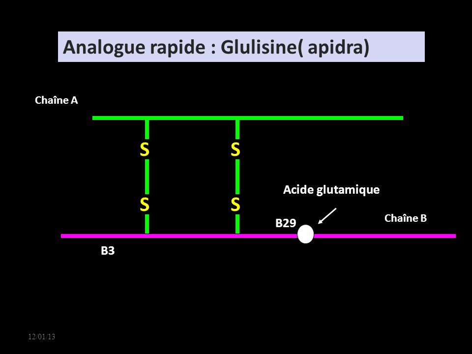 Analogue rapide : Glulisine( apidra)