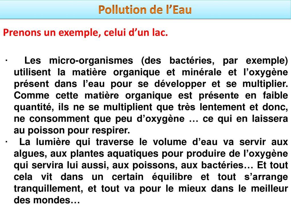 pollution de l eau ppt t l charger. Black Bedroom Furniture Sets. Home Design Ideas
