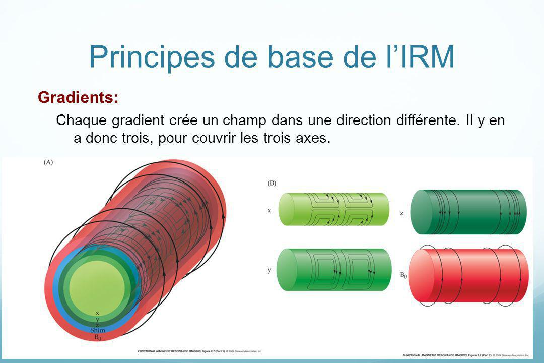 Principes de base de l'IRM