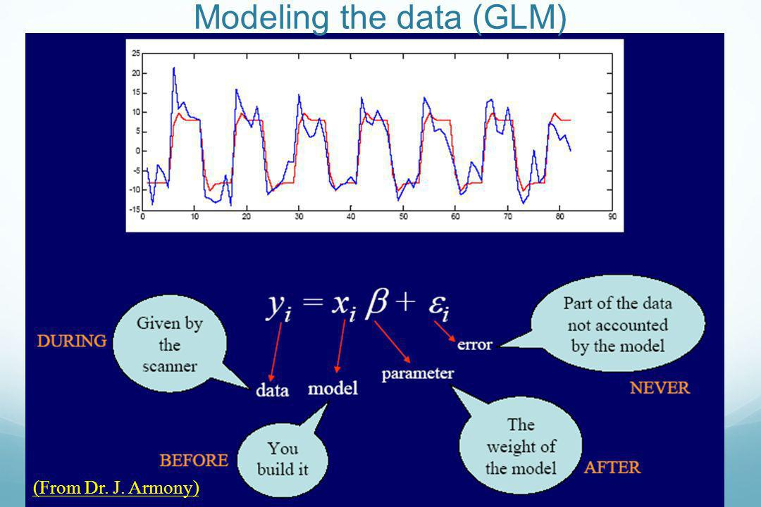 Modeling the data (GLM)
