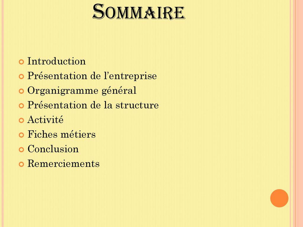 Rapport De Stage Ralitera Adrien 3 7 Ppt Video Online