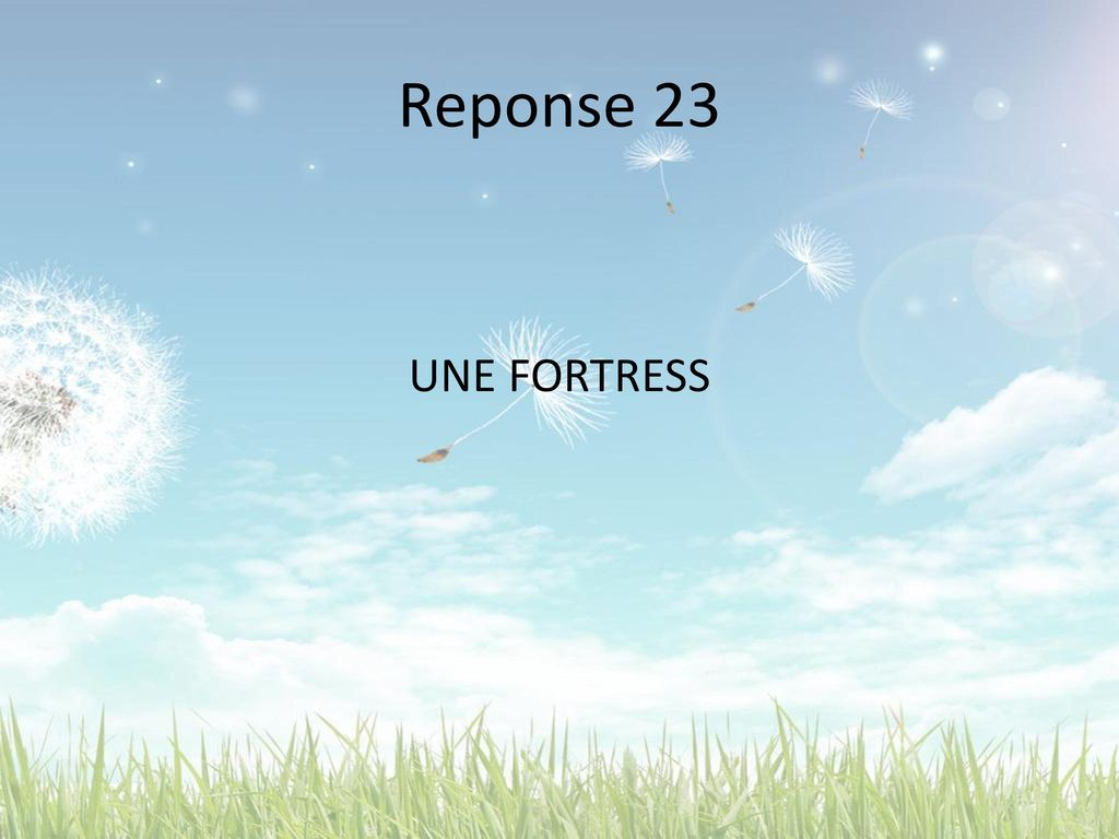 Reponse 23 UNE FORTRESS