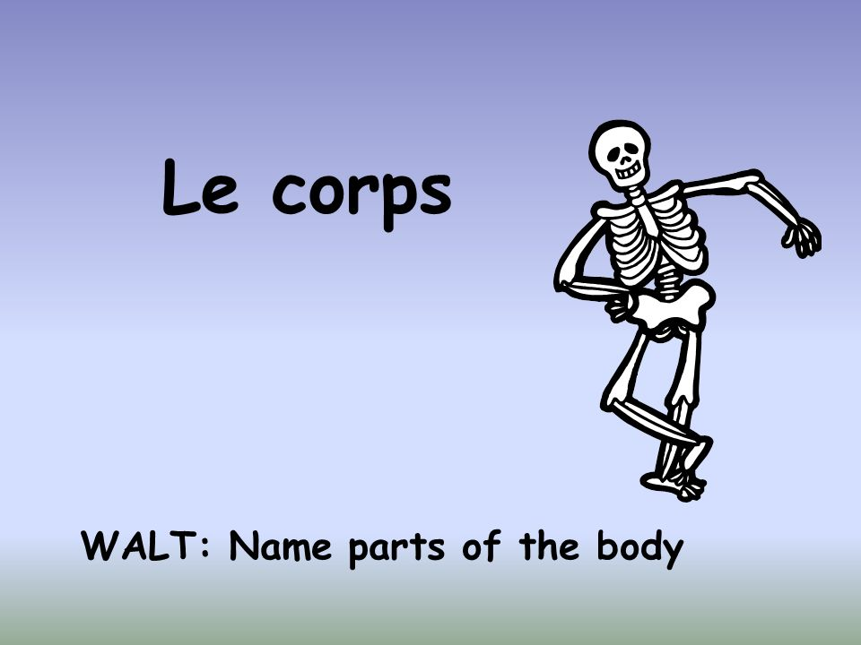 Le corps WALT: Name parts of the body