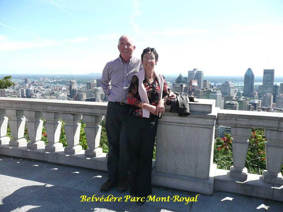 Rencontre roux mont royal
